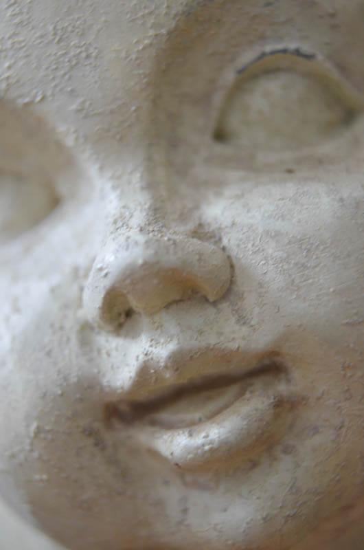 macro of Angel face